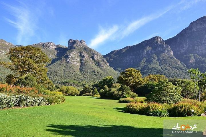گردشگران برای دیدن آفریقای جنوبی باید تا سال 2021 صبر نمایند، کرونا در آفریقا اوج می گیرد؟