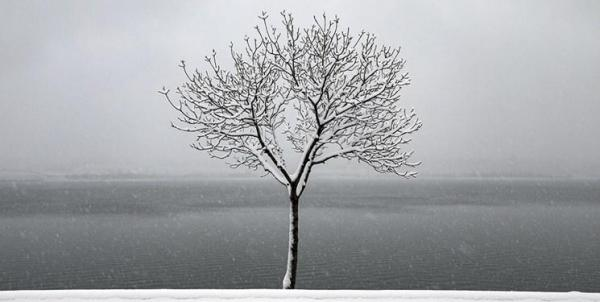 شنبه در این استان یخبندان می شود
