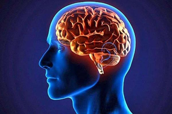 تاثیر عجیب دو زبانه بودن بر عملکرد مغز