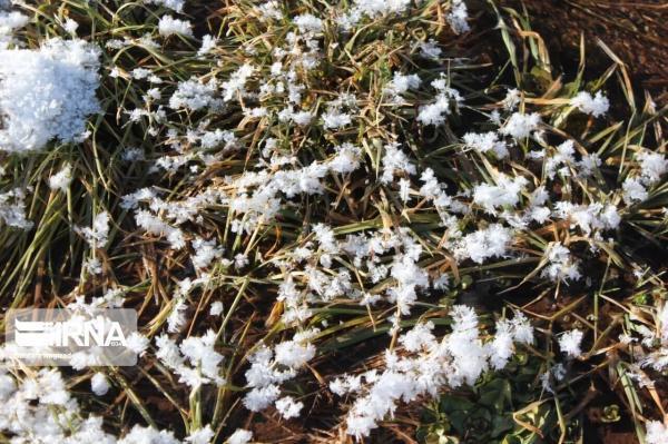 خبرنگاران گلستان سرد و برفی می گردد