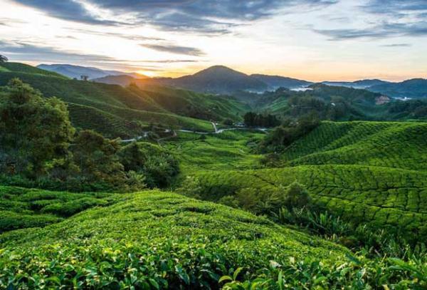 دیدنیهای توریستی مالزی
