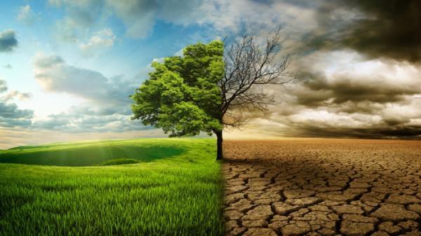 بررسی تغییر اقلیم شرق خراسان رضوی در تربت جام